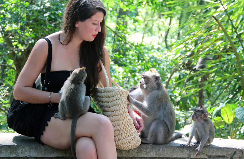 Lovely Luggage Monkey Forest Ubud: what to expect