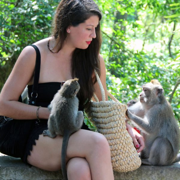 Monkey Forest Ubud: What to expect