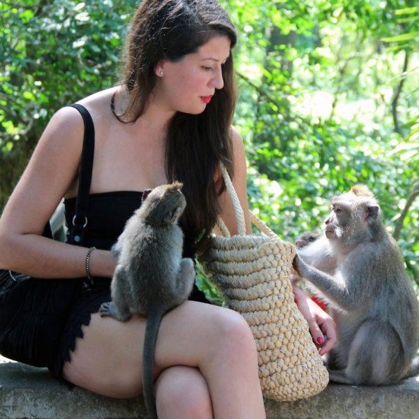 Monkey Forest Ubud: What to expect